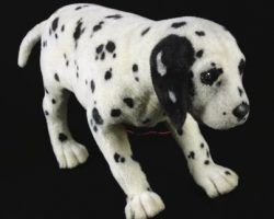 Animatronic puppy from 102 Dalmations