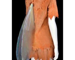 """""""Tinkerbell"""" costume with wings from Hook"""