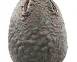 Full-scale egg from Aliens