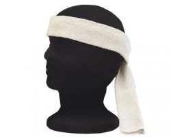 Star Trek Spocks Headband