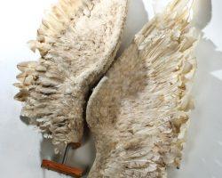 Michael Michaels (John Travolta) Wings