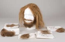 Brad Pitt wig & facial hair from Legends of the Fall