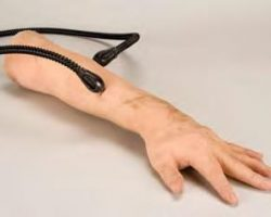 Screen-used silicone arm of Keanu Reeves – The Matrix