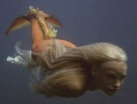 Daryl Hannahs hero mermaid tail from Splash