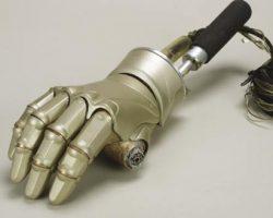 Animatronic hand from Bicentennial Man
