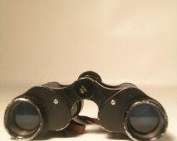 Inglourious Basterds Lt. Aldo Brad Pitt Binoculars