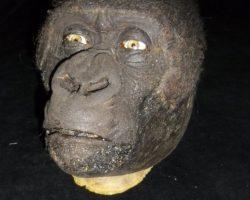 Congo (1995) Ape Head