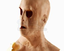 Hollow Man  Sebastian Caines (Kevin Bacon) Silicone Mask