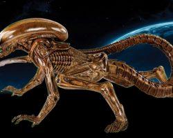 Alien 3 Reference Model
