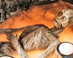 Cocoon Dead Alien Prop