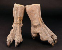 Bram Stoker's Dracula Screen-Used Vampire Bat Feet