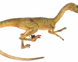 "Compsognathus ""Compy"" Hero Animatronic, Screen-Used Figure From Jurassic Park 2"