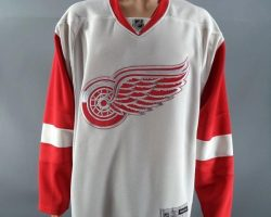 RoboCop Alex Murphy Joel Kinnaman Closet Detroit Red Wings Jersey Set