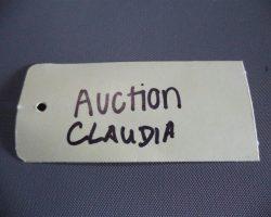 Warehouse 13 Claudia Allison Scagliotti Screen Worn Alpha Lux Coat Ep 205