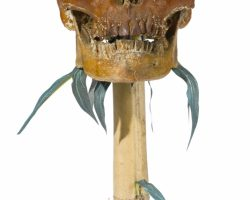 A Prop Skull From Apocalypse Now