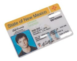 Roswell (TV) – Maxs Fake Drivers License (Jason Behr)