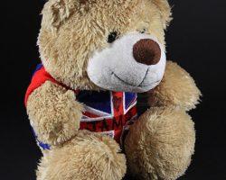 RUSH – James Hunt Fan Teddy Bear