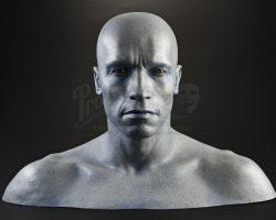 Batman & Robin Mr. Freeze (Arnold Schwarzenegger) Display Head