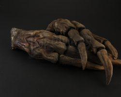 Predators River Ghost (Ram Runner) Gloves